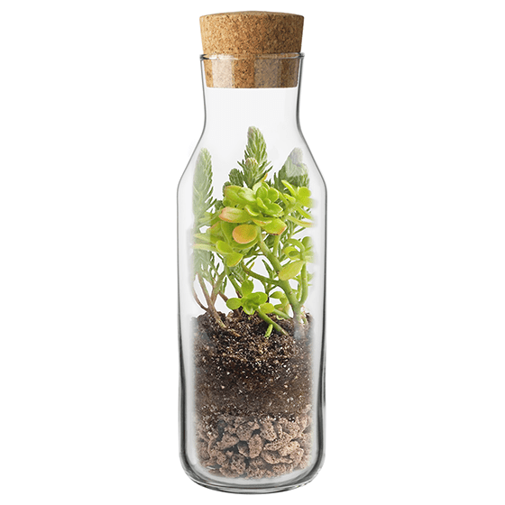 Kit terrarium vertical